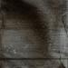 \'Hersenschimscan 5\' print 42x30cm 2008